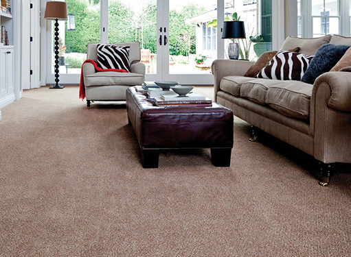 Premier Stainmaster Naples Fl Abbey Carpet Amp Floor